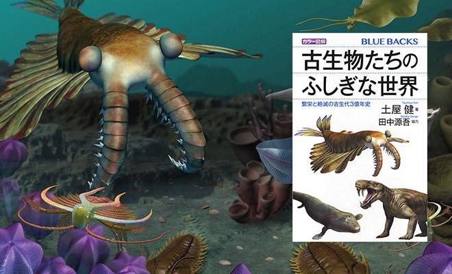 【深海生物、恐竜、王蟲ファン必見】地球最古の王・アマノマロカリスが可愛すぎる